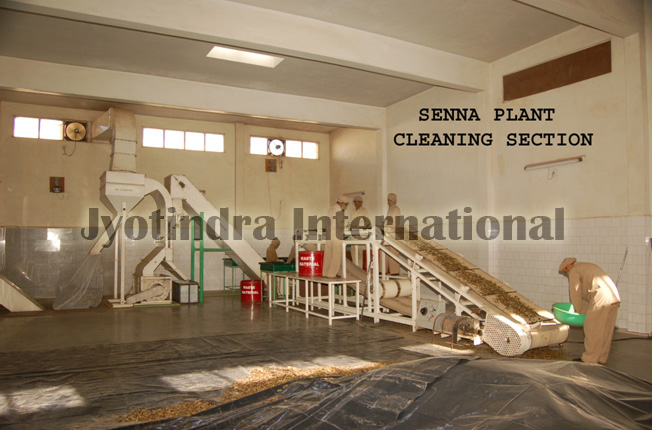 Machin Of Cleaning of Senna,Jyotindra International